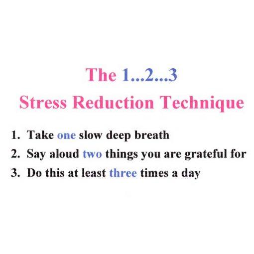The 1 2 3 Stress Reduction Technique