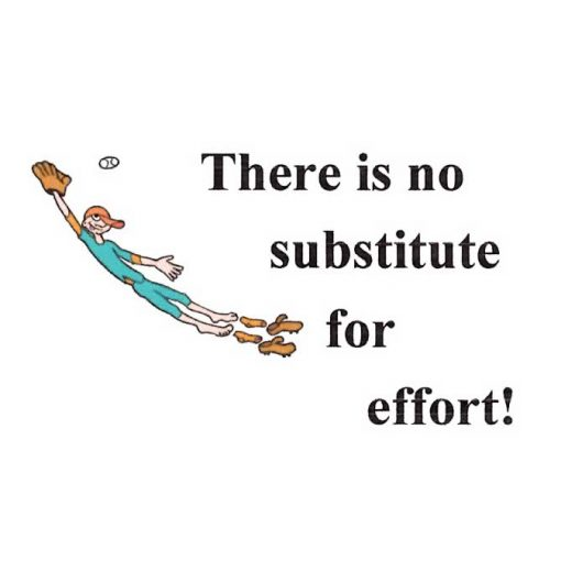 There Is No Substitute For Effort!